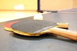 卓球 画像